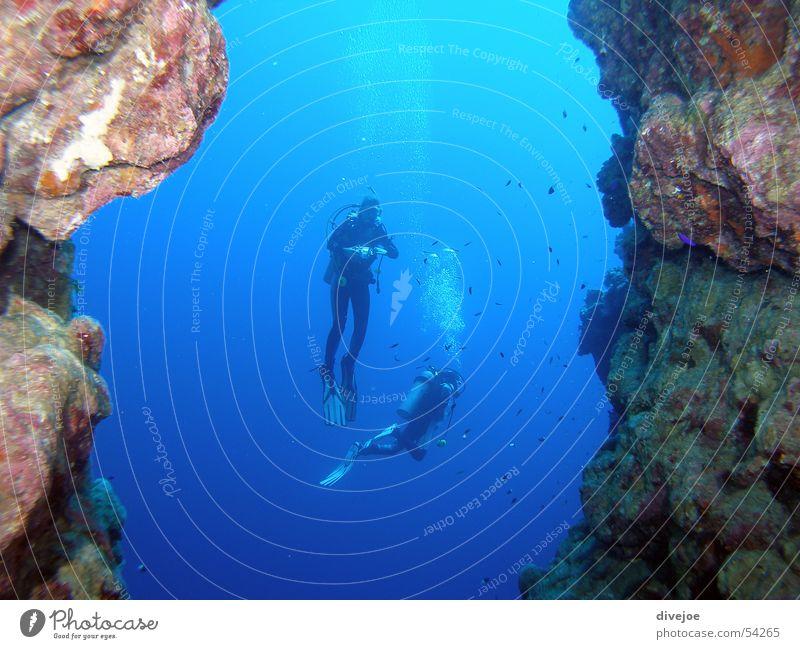 Taucher am Bluehole Meer blau tauchen Luftblase Taucher Ägypten Unterwasseraufnahme Dahab Rotes Meer