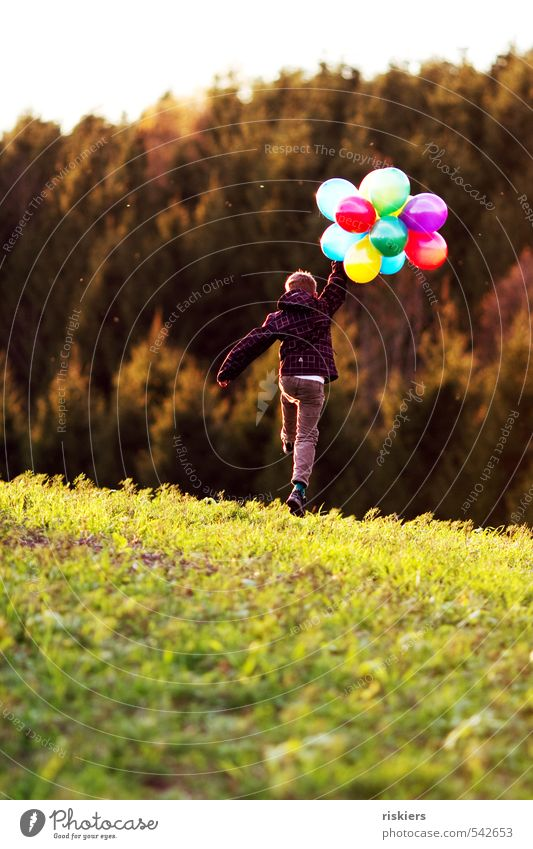 meine luftballons und ich vi Mensch maskulin Kind Junge Kindheit Leben 1 3-8 Jahre 8-13 Jahre Umwelt Herbst Schönes Wetter Wiese Feld Wald fliegen rennen