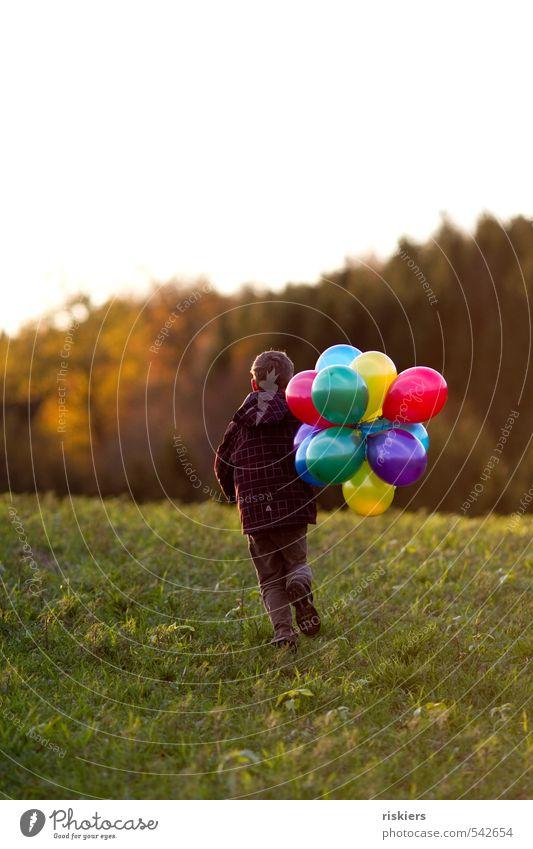 meine luftballons und ich ii Mensch maskulin Kind Junge Kindheit Leben 1 3-8 Jahre 8-13 Jahre Herbst Schönes Wetter Wiese Feld Wald rennen frei Freundlichkeit