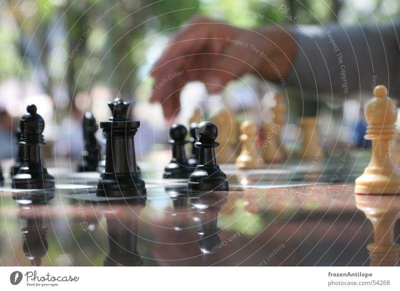 schach Makroaufnahme schwarz weiß Hand Unschärfe Schachbrett Platz Sonne Schatten Santa Cruz Schachfigur