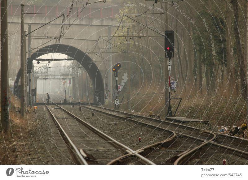 Nebelbahngänger Mensch maskulin 18-30 Jahre Jugendliche Erwachsene Verkehr Verkehrsmittel Verkehrswege Schienenverkehr Eisenbahn Personenzug Güterzug Gleise
