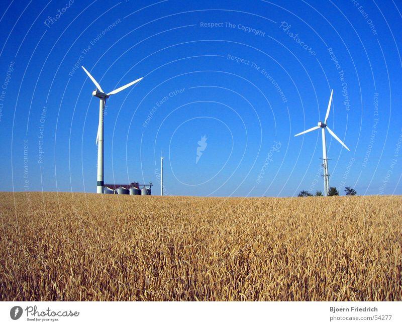 Windkraftanlagen Natur Himmel weiß blau Sommer gelb Kraft Energiewirtschaft Gastronomie Getreide Landwirtschaft Amerika Korn Schönes Wetter