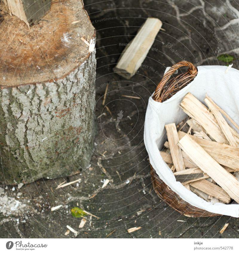 bereit fürs Winterquartier Gartenarbeit Holzhacken Landwirtschaft Forstwirtschaft Energiewirtschaft Herbst Baumstumpf Brennholz Korb Holzstapel klein viele
