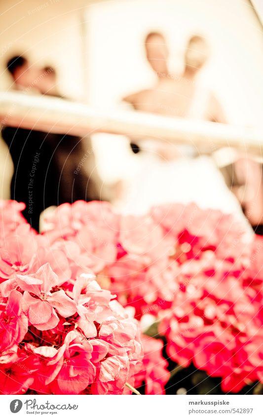 hochzeit Mensch Jugendliche Junge Frau Junger Mann feminin Haare & Frisuren Stil Feste & Feiern Kopf Mode Paar Freundschaft rosa Familie & Verwandtschaft
