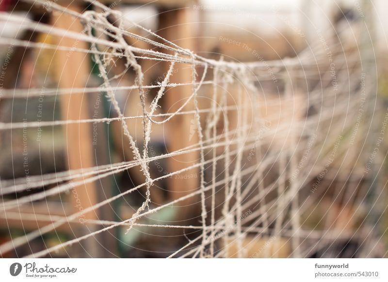 verschnürt noch mal. Freiheit Linie Angst Armut gefährlich Seil bedrohlich kaputt einfach Schnur Sicherheit Schutz fest Zaun Zusammenhalt Irritation
