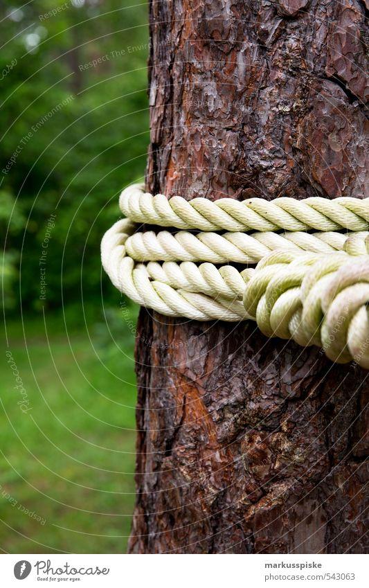 slack line Natur Ferien & Urlaub & Reisen Baum Erholung ruhig Umwelt Leben Spielen Garten Park Freizeit & Hobby Fitness sportlich Baumstamm Gleichgewicht Sport-Training