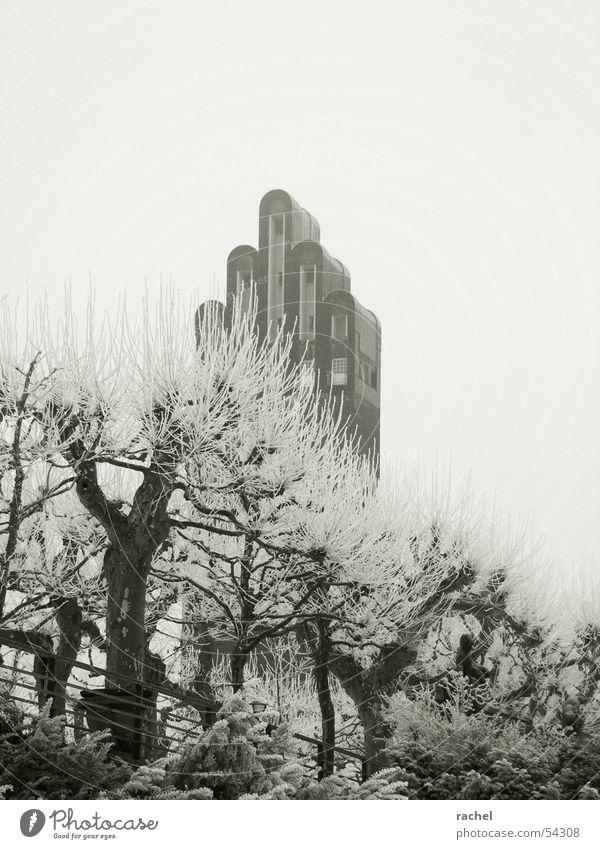 Der Winter hört nie auf... Himmel Baum Winter ruhig Wolken Einsamkeit kalt grau Traurigkeit Mauer Park Eis Kunst trist Frost Turm