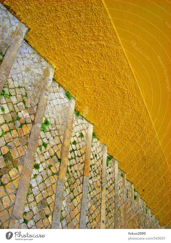 dna alt gelb Wand Leben Wege & Pfade Mauer Stein hell Treppe Fröhlichkeit Unendlichkeit historisch Ziel Portugal Altstadt Fußgänger