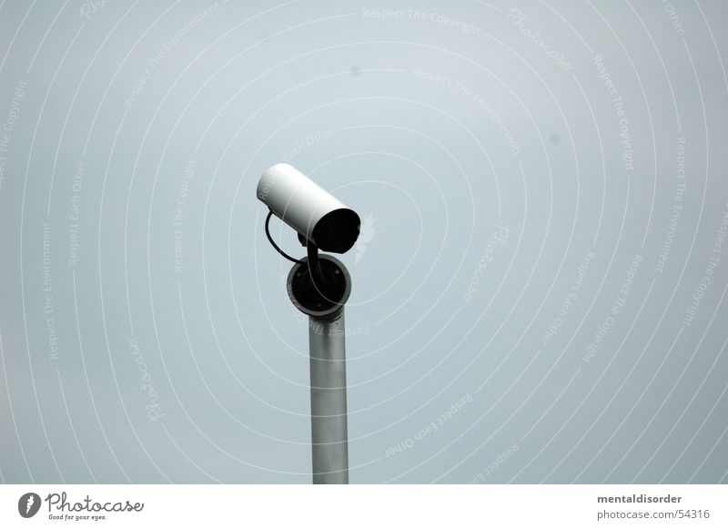 sehen ... Himmel Glas Fotografie Sicherheit Elektrizität Kabel beobachten Klarheit Fotokamera Schutz Publikum Linse Nachbar Überwachung spionieren Zoomeffekt