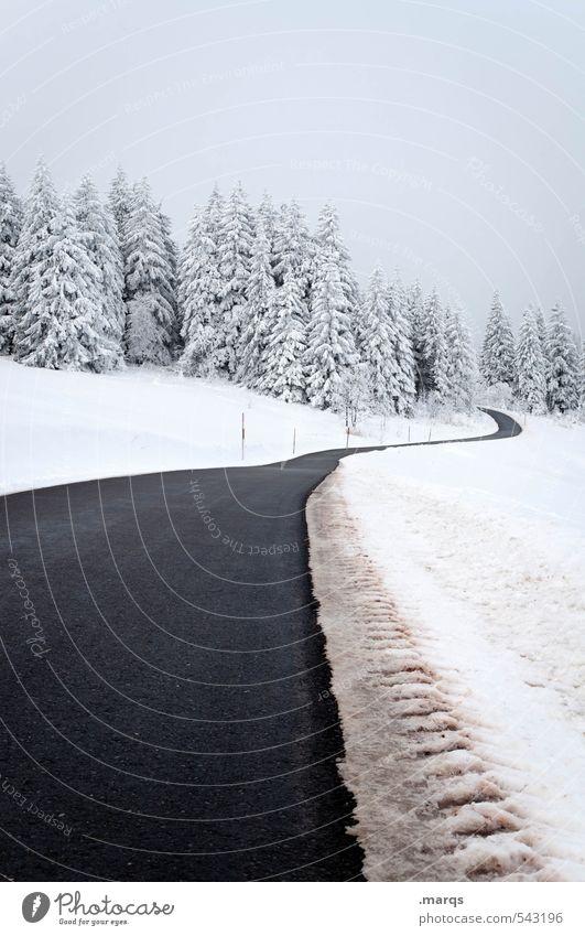 Weit weg Ausflug Abenteuer Winterurlaub Natur Landschaft Schnee Baum Hügel Verkehr Straße Wege & Pfade einfach kalt Stimmung Beginn Perspektive Ziel Zukunft