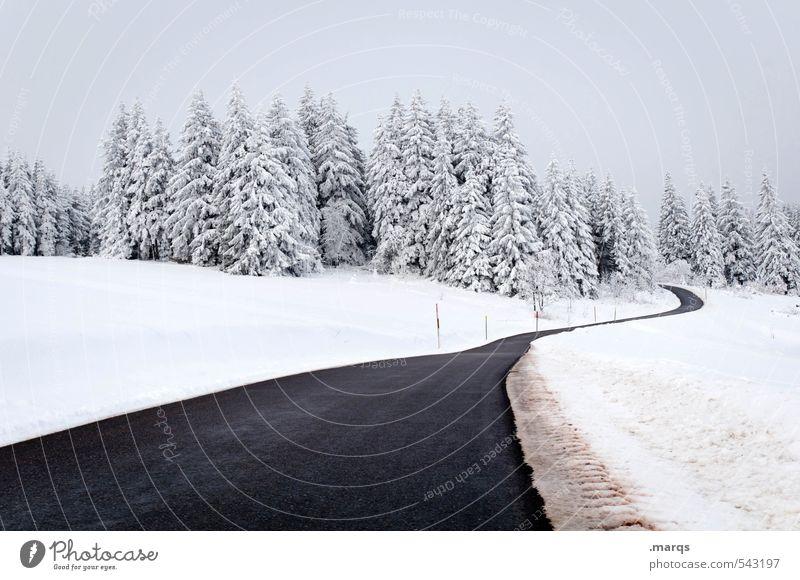 Landstraße Ferien & Urlaub & Reisen Tourismus Ausflug Abenteuer Winter Schnee Winterurlaub Himmel Unwetter Feld Wald Hügel Verkehr Verkehrswege Straße
