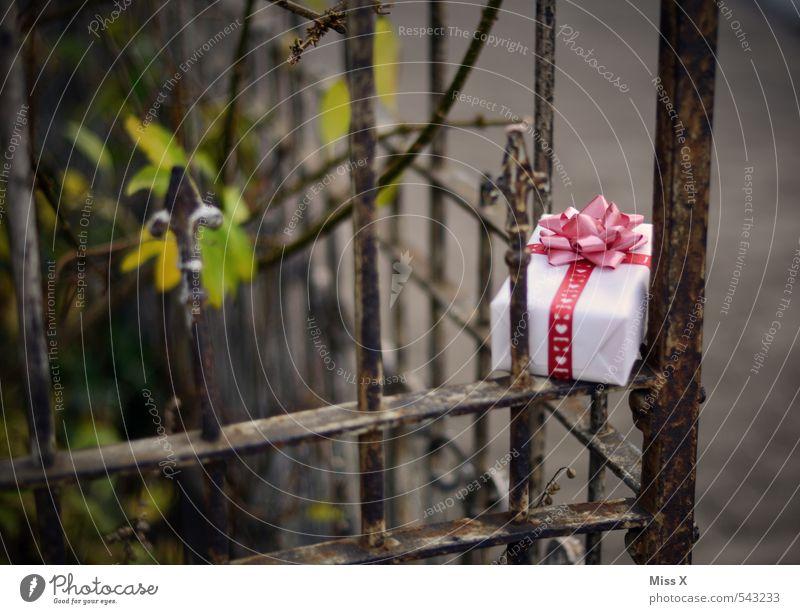 Versteckt Weihnachten & Advent Liebe Gefühle Glück Feste & Feiern Garten Stimmung Häusliches Leben Dekoration & Verzierung Geburtstag Herz Lebensfreude Geschenk Romantik Zaun Überraschung