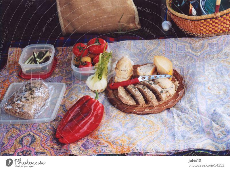 Picknick Gesundheit Ernährung Brot Paprika Wiese Käse gemütlich Korb Sommer Ferien & Urlaub & Reisen Strukturen & Formen Natur Lebensmittel Decke Italien Pause