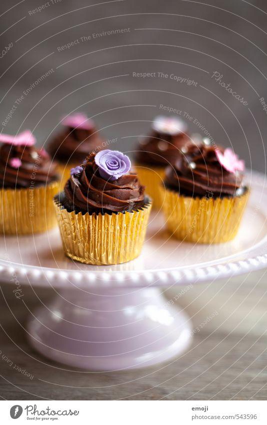 chocolate Ernährung süß Süßwaren lecker Kuchen Schokolade Fingerfood Slowfood Cupcake Kalorienreich