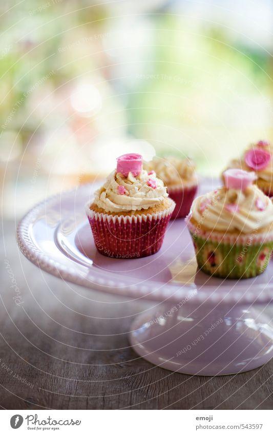 rosig Kuchen Dessert Süßwaren Ernährung Picknick Slowfood Fingerfood lecker süß rosa Cupcake Farbfoto Innenaufnahme Nahaufnahme Menschenleer Tag