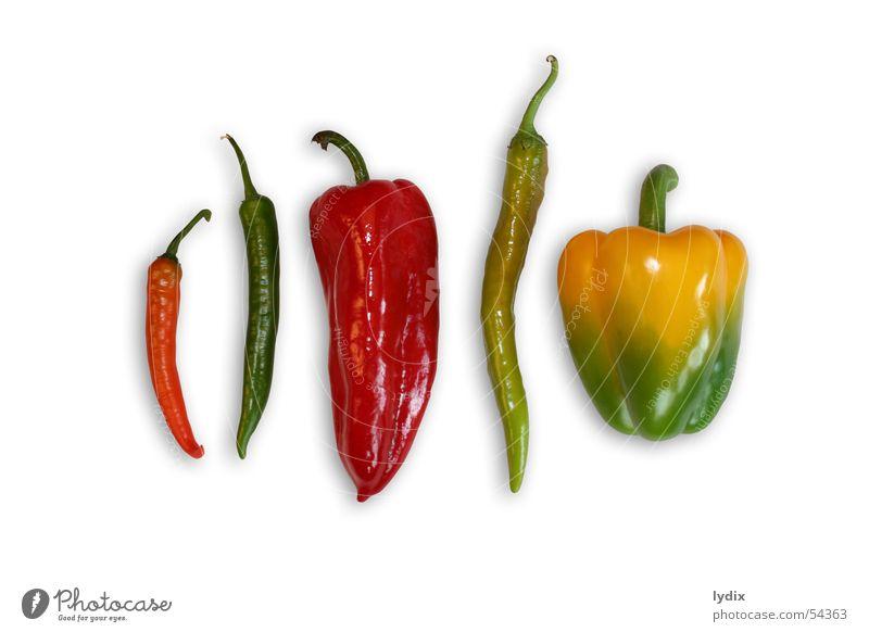 paprika, peperoni grün rot gelb Stil Gemüse lecker saftig Paprika Auswahl Lebensmittel Peperoni