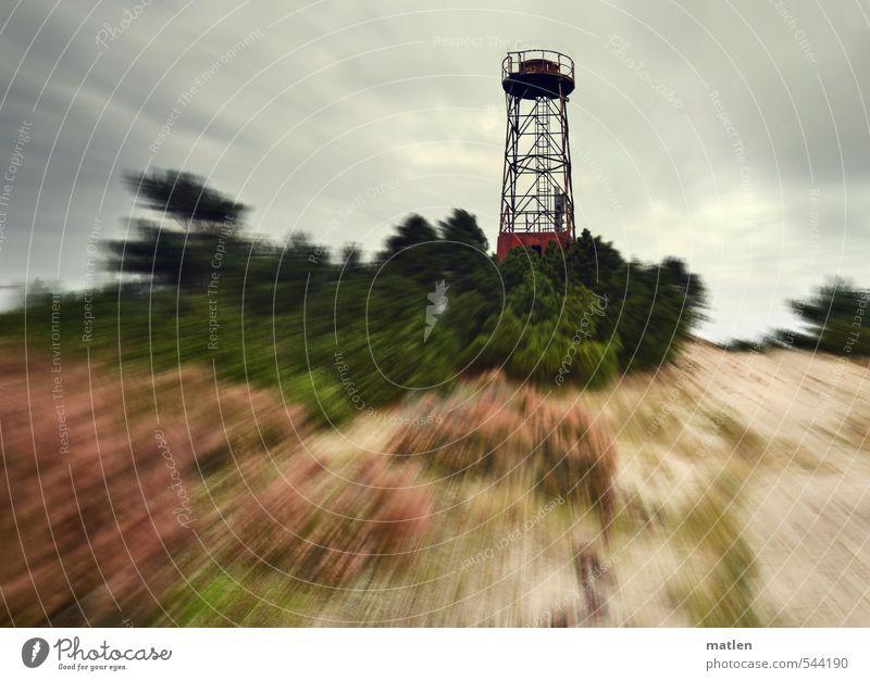 Schwedenhügel Landschaft Pflanze Sand Himmel Wolken Gewitterwolken Herbst Wetter schlechtes Wetter Wind Baum Sträucher Wald Hügel Küste Ostsee Leuchtturm braun