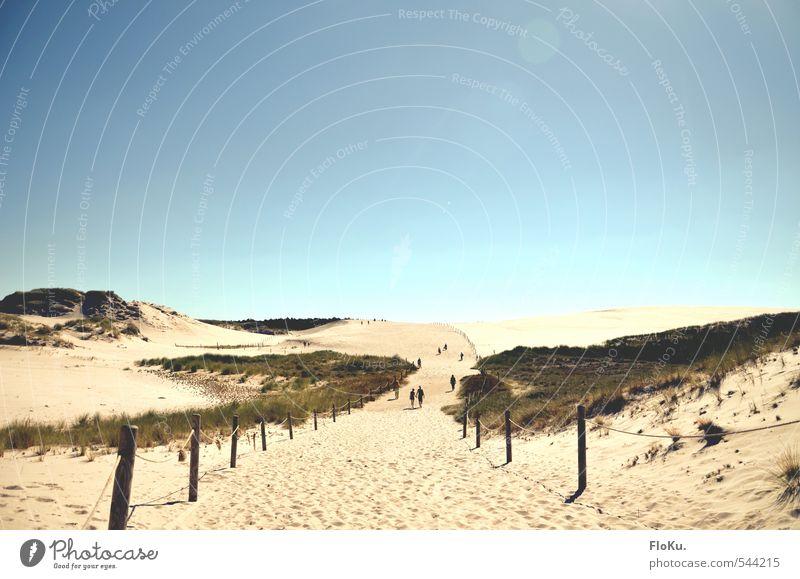 Dünen von Leba Natur Ferien & Urlaub & Reisen Sommer Sonne Landschaft Strand Ferne Umwelt Küste Sand Klima Tourismus Schönes Wetter Ausflug Abenteuer Unendlichkeit
