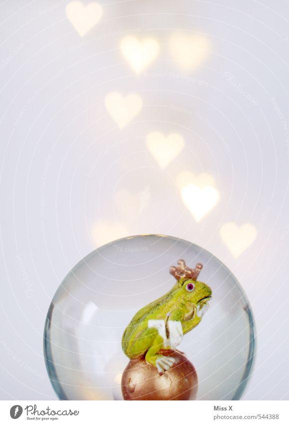in love Valentinstag Frosch 1 Tier Herz Küssen leuchten Liebe schleimig Gefühle Stimmung Verliebtheit Romantik Froschkönig Prinz Traumprinz Krone herzförmig