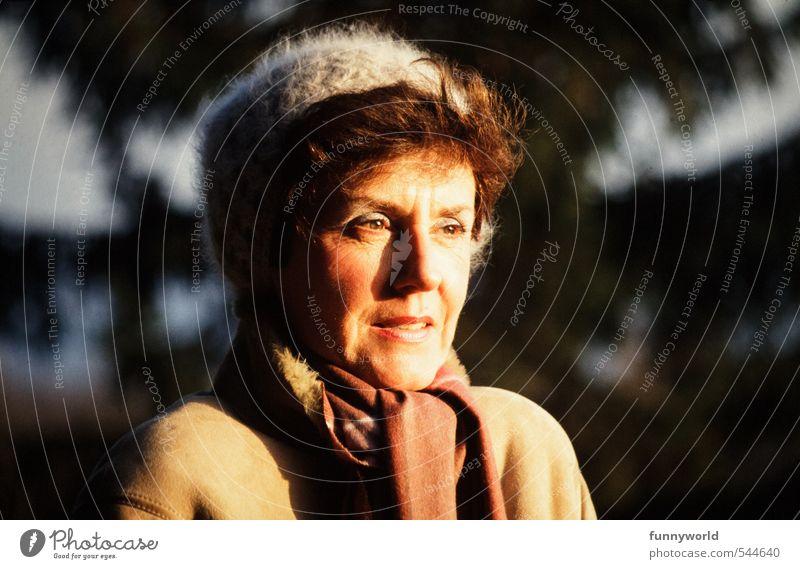 Wintersonne feminin Frau Erwachsene Leben 1 Mensch 45-60 Jahre Sonnenaufgang Sonnenuntergang Sonnenlicht Herbst Schönes Wetter Eis Frost Mantel Schal Mütze