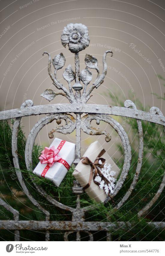 Schenken Reichtum Garten Feste & Feiern Weihnachten & Advent Geburtstag Sträucher Verpackung Paket Schleife Gefühle Stimmung Vorfreude Güte Geschenk schenken