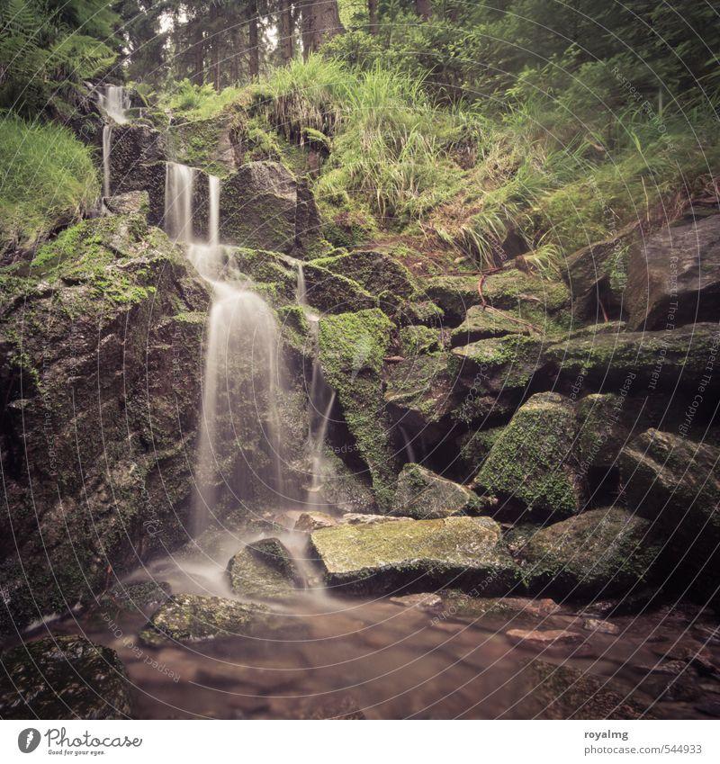 Wasserkraft II Sommer Sommerurlaub Berge u. Gebirge Umwelt Natur Pflanze Tier Teich Bach Fluss Wasserfall Wachstum ästhetisch Zufriedenheit Wellness Farbfoto