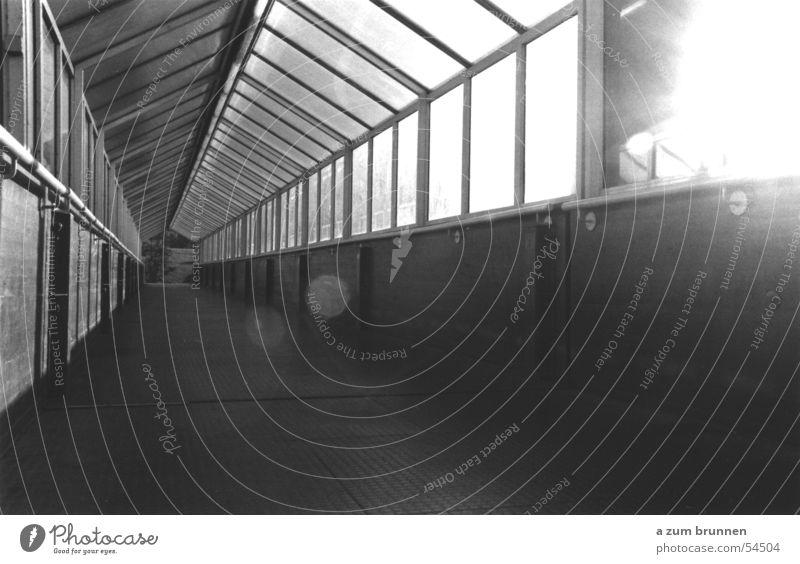 Überführung Sonne Glas Fußgänger Fluchtpunkt Bahnübergang