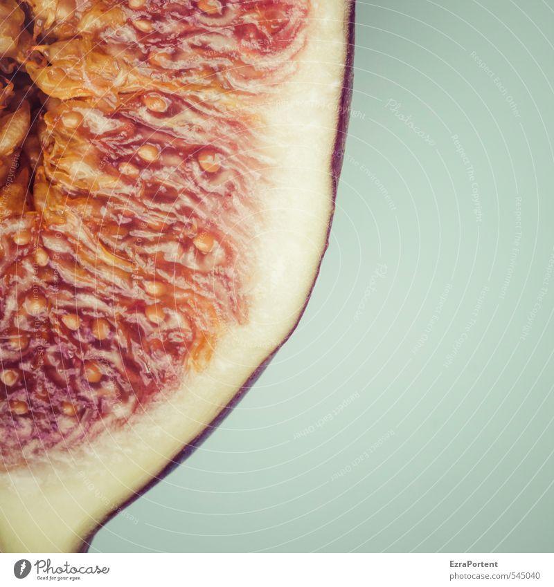 das ist Feige Lebensmittel Frucht Ernährung Vegetarische Ernährung Gesunde Ernährung ästhetisch lecker natürlich saftig blau orange rot Fruchtfleisch fruchtig