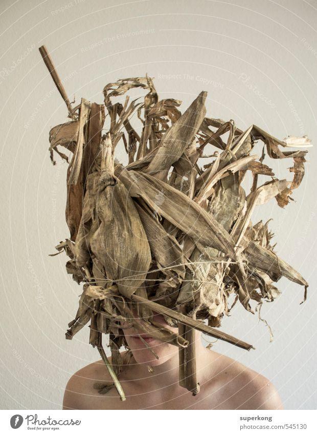 INDIAN feminin Junge Frau Jugendliche Körper Haut Kopf Haare & Frisuren Gesicht 1 Mensch 18-30 Jahre Erwachsene Kunst Umwelt Natur Pflanze Tier Urelemente