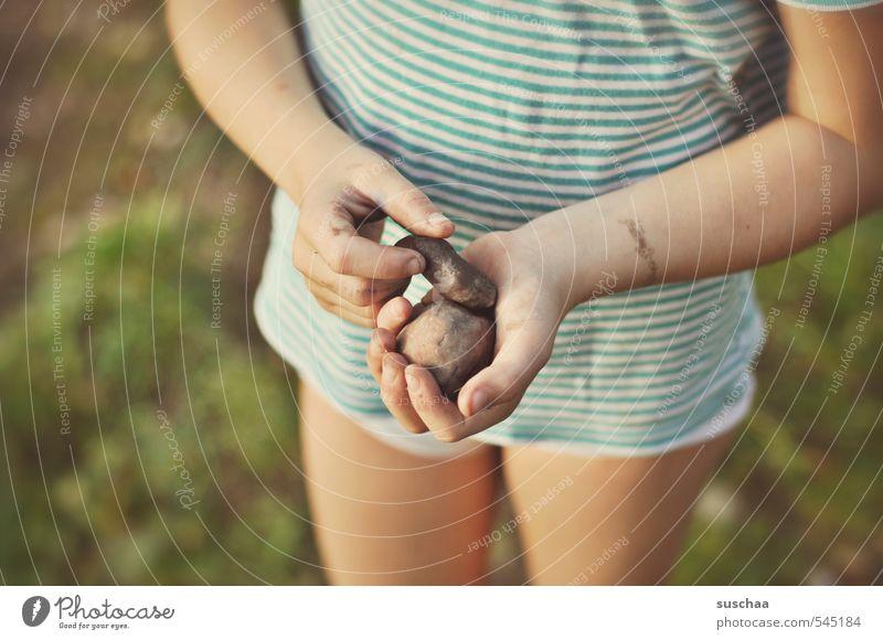 wurfgeschosse Mensch Kind Natur Sommer Hand Mädchen Umwelt Gras Junge Freiheit Stein Beine Freizeit & Hobby Kindheit Arme Sträucher