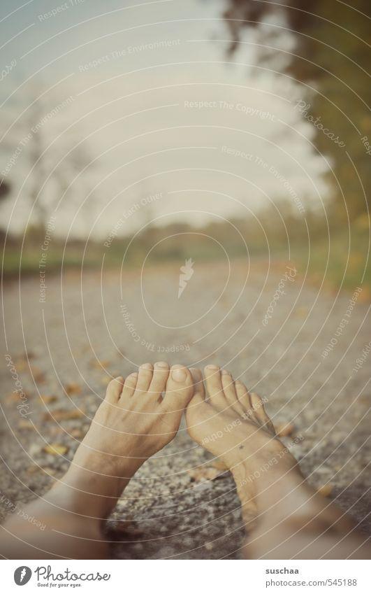 gruppenkuscheluntauglich Umwelt Natur Himmel Herbst liegen Wege & Pfade Fußweg Beine Zehen fantastisch Tod Farbfoto Gedeckte Farben Außenaufnahme