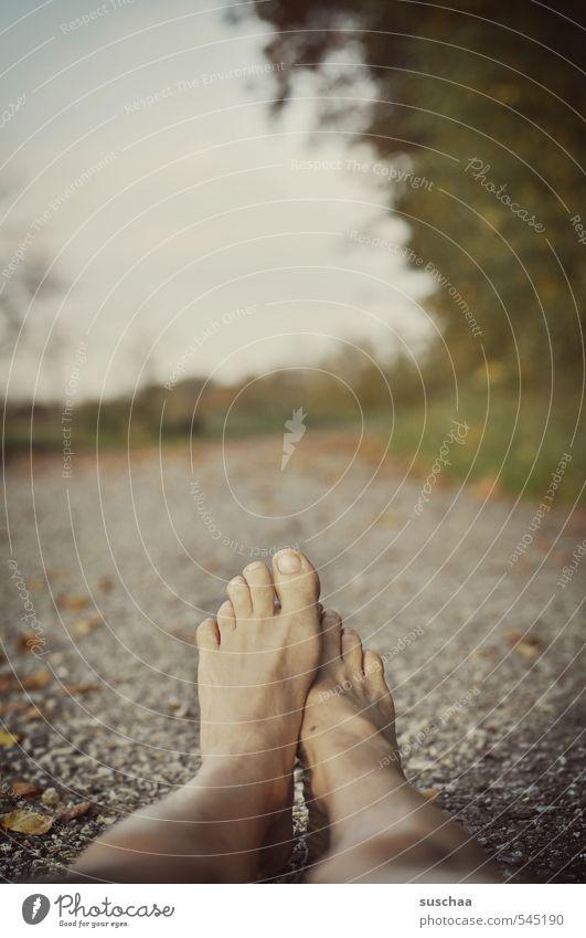 einzel-lieger Körper Haut Beine Fuß 1 Mensch Umwelt Natur Landschaft Himmel Herbst Beton liegen nackt Einsamkeit kalt Tod Unfall Wunde Asphalt Blatt Strasse