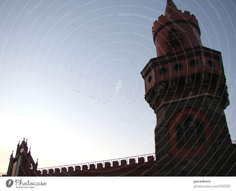 Berlin Spreebogen Himmel blau Winter Vogel Brücke Turm Backstein Osten Friedrichshain Kreuzberg Zugvogel Zinnen Oberbaum-City