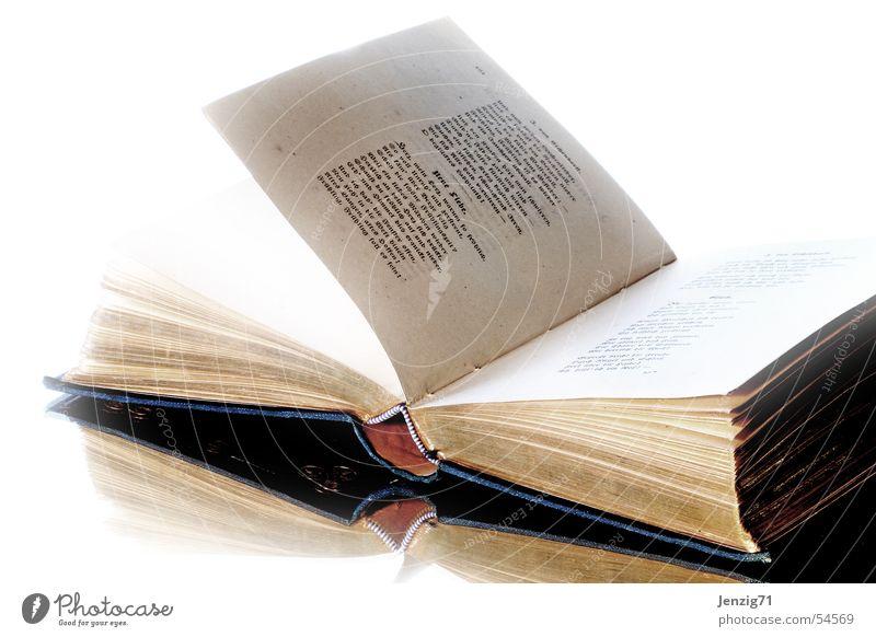 Blüthen und Perlen - 2. Buch Literatur Gedicht Lyrik lesen antik dichtung geschlossen book books poem poetry