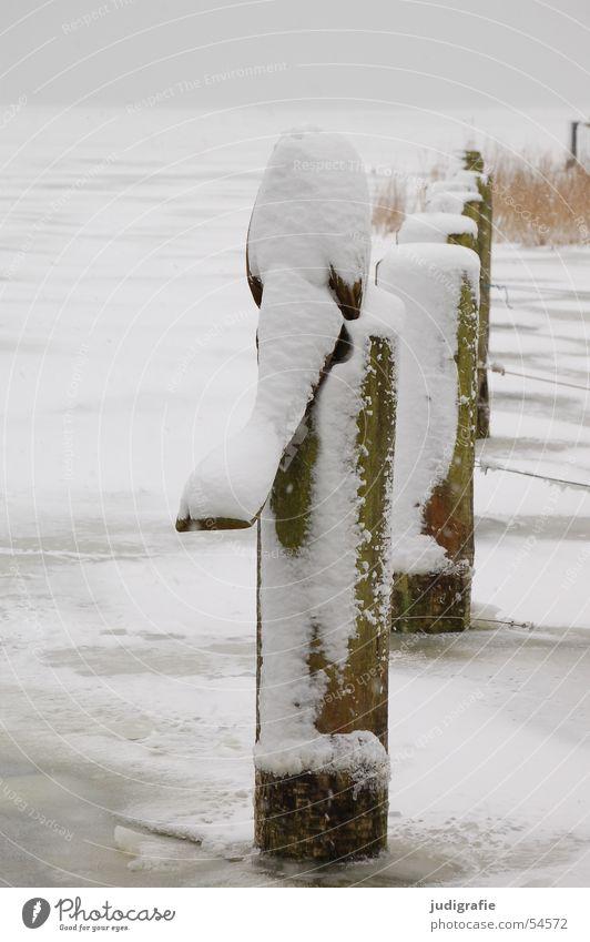 Eisiger Bodden Natur Wasser weiß Winter Ferien & Urlaub & Reisen ruhig kalt Schnee Erholung Holz grau See Landschaft Seil trist
