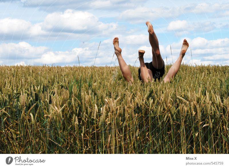 Ein Bett im Kornfeld Mensch Himmel Jugendliche Sommer Junge Frau Junger Mann Erotik Liebe Gefühle Beine Fuß Paar Stimmung Feld wild Schönes Wetter