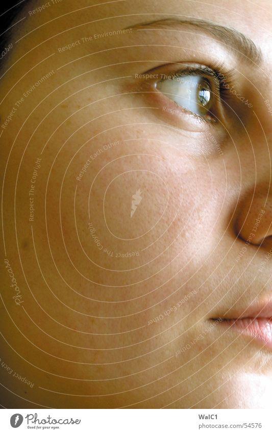 Eyecatcher Frau Gesicht Auge Mund Haut Nase Dame Wange Wimpern Augenbraue Pupille