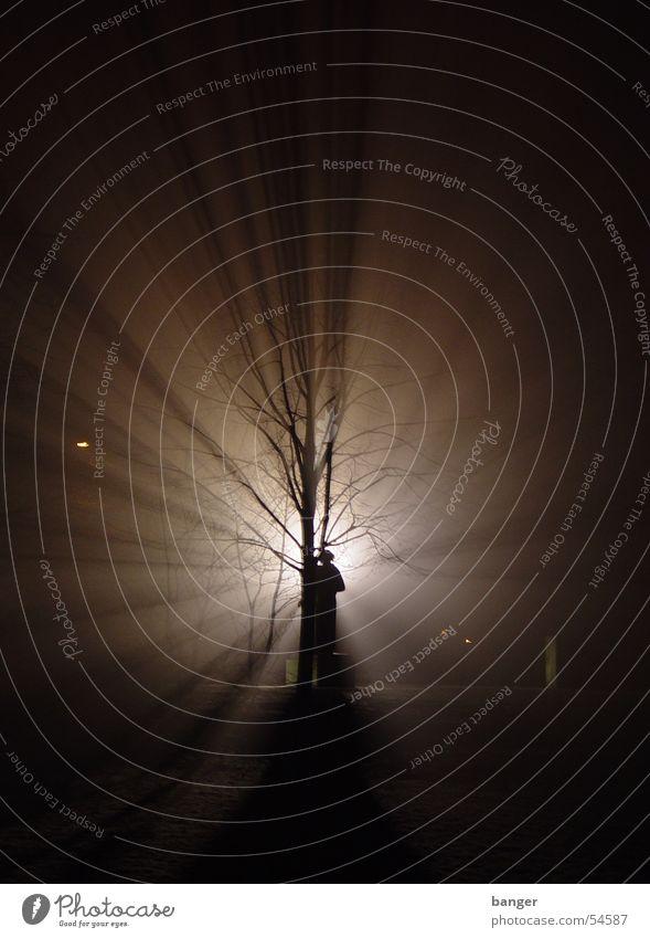 Clara im Zetkin-Park im Gegenwind Baum Schnee Nebel Denkmal Kino