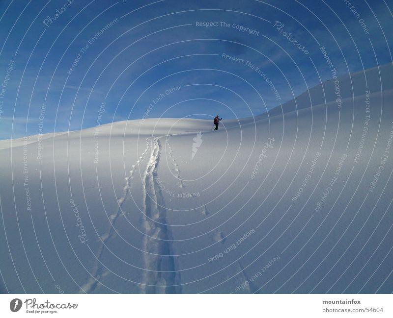 Aufstieg im Morgenblau Winter Schnee Skitour