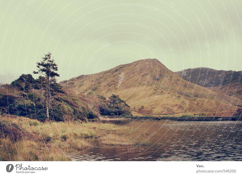 Damals war's wandern Natur Landschaft Himmel Wolken Herbst Baum Gras Hügel Felsen Berge u. Gebirge See gelb ruhig Farbfoto Gedeckte Farben Außenaufnahme