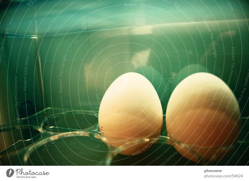 Egg Couple grün Frühstück Ei Kühlschrank