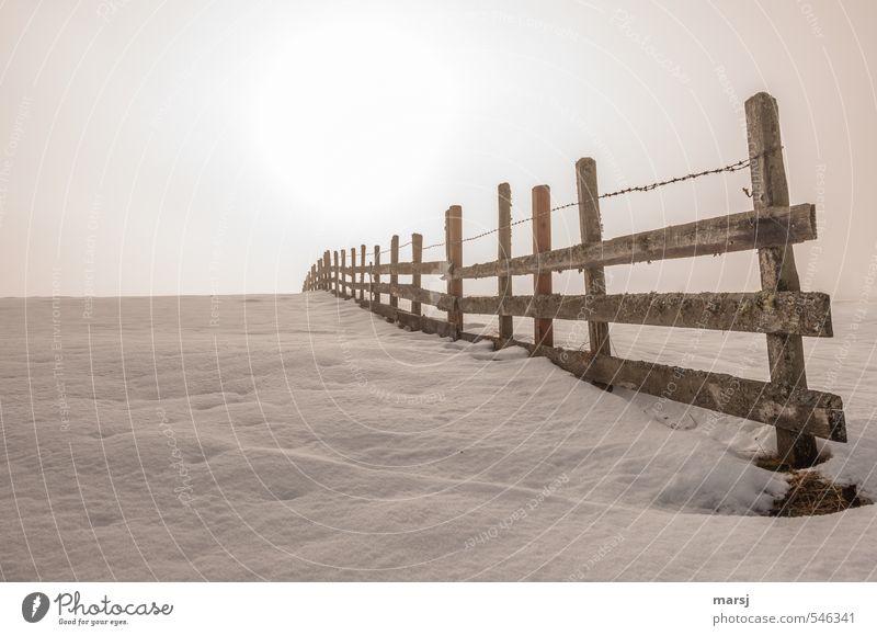 Sanfter Novembernebel Natur Himmel Sonne Sonnenlicht Herbst Winter schlechtes Wetter Nebel Eis Frost Schnee Hügel Zaun Zaunpfahl Bretterzaun Stacheldrahtzaun