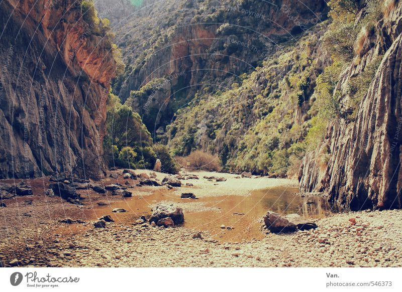 Frühjahrsputz Ferien & Urlaub & Reisen wandern Natur Landschaft Erde Wasser Frühling Pflanze Sträucher Felsen Berge u. Gebirge Schlucht schön Wärme Pfütze Stein