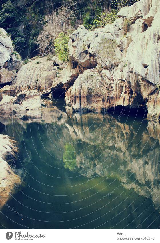 grüne Lagune Ferien & Urlaub & Reisen wandern Natur Landschaft Wasser Frühling Sträucher Felsen Schlucht Teich Reflexion & Spiegelung Farbfoto Gedeckte Farben
