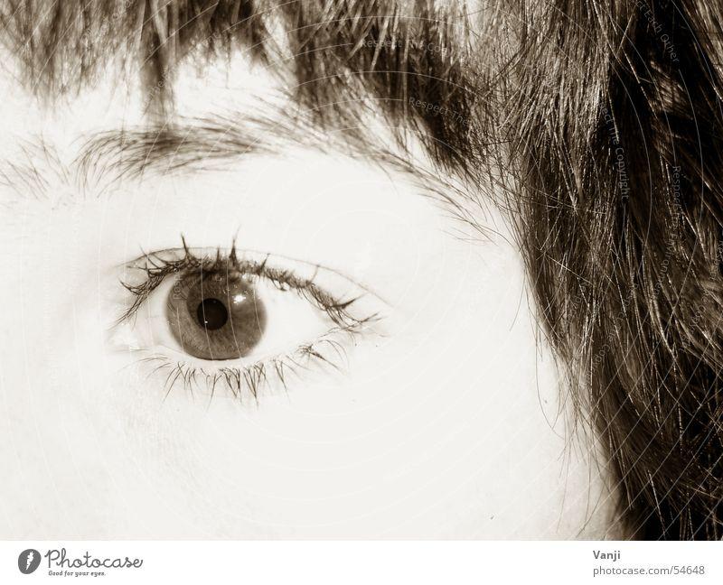 Augenblick Frau Gesicht Auge Haare & Frisuren