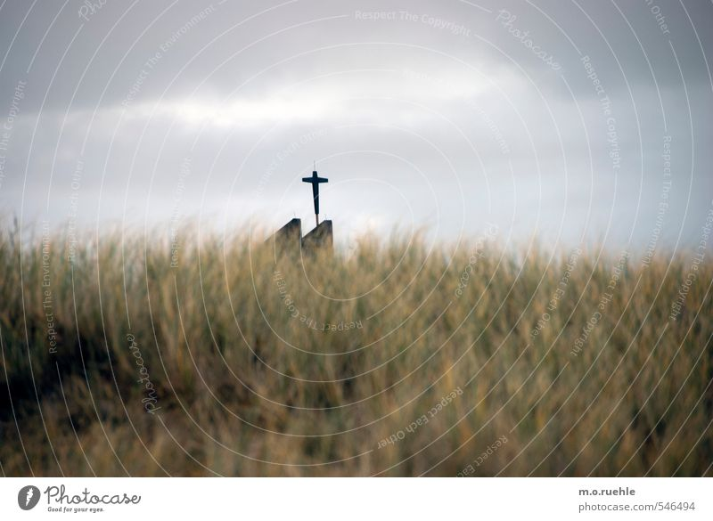 cross and grass Natur Ferien & Urlaub & Reisen Himmel (Jenseits) Einsamkeit Landschaft Strand Ferne Umwelt Gras Küste Religion & Glaube Stimmung Kraft Wind