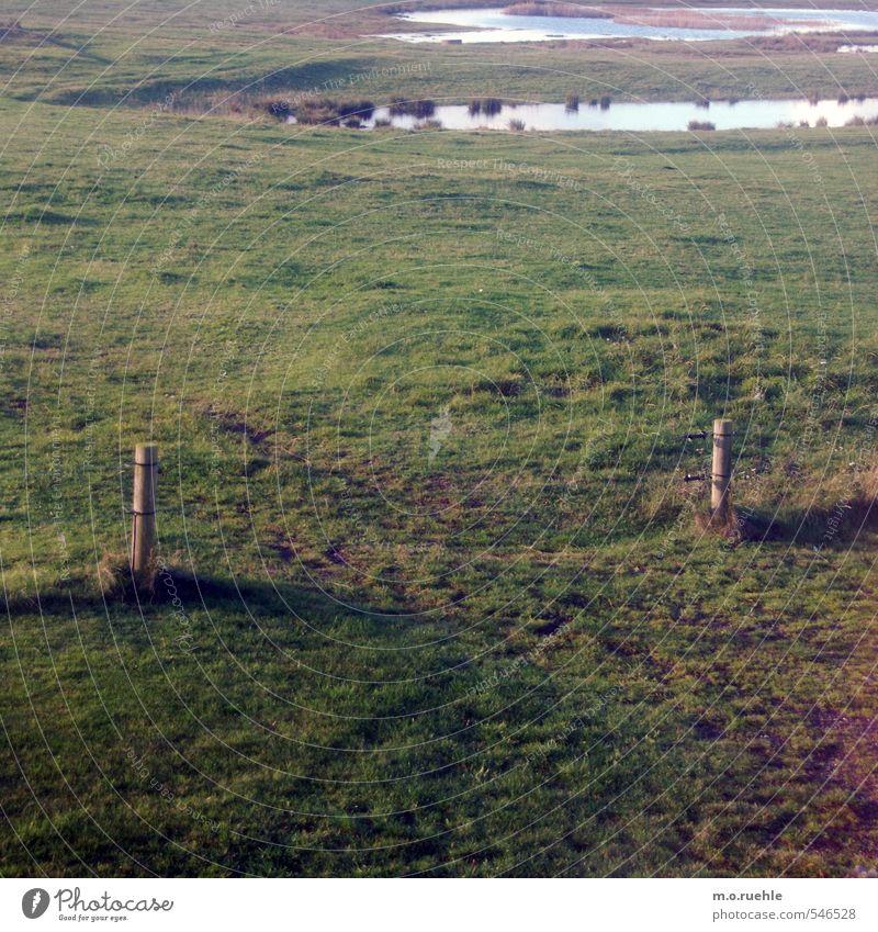 II Natur Ferien & Urlaub & Reisen grün Wasser Einsamkeit Landschaft Ferne Umwelt Leben Herbst Gras Freiheit Holz Feld Tourismus Sträucher