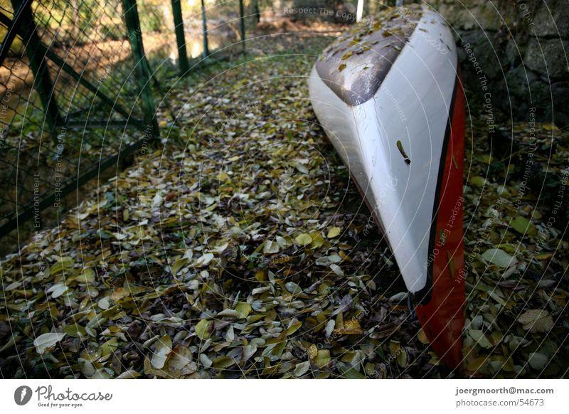 Herbst Herbst Garten Landschaft Wasserfahrzeug Freizeit & Hobby Idylle Jahreszeiten Kanu Braunschweig