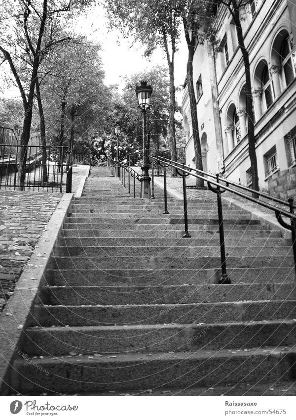 Neverending Steps steil Lampe Straßenbeleuchtung antik Baum Herbst Paris Stadtteil Sacré-Coeur Blatt Haus Einsamkeit Außenaufnahme Treppe alt herbstlich
