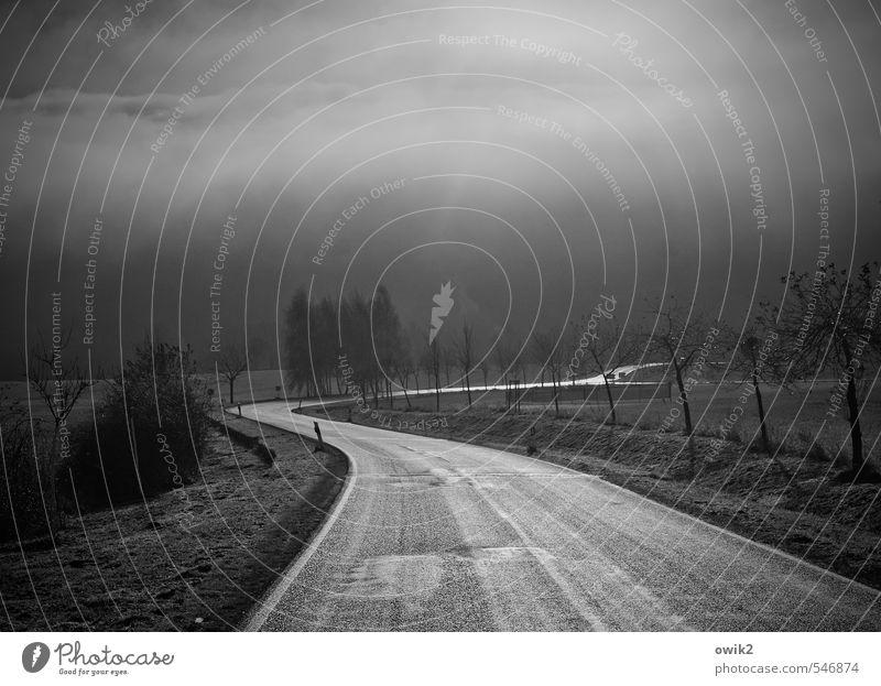 Rolling home Umwelt Natur Landschaft Pflanze Luft Klima Wetter Regen Baum Sträucher Wiese Feld Verkehr Verkehrswege Straße Fahrbahn Kurve Kurvenlage leuchten